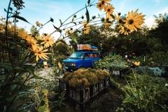 SILA YOLU - Der Ferientransit in die Türkei und die Erzählungen der Autobahn